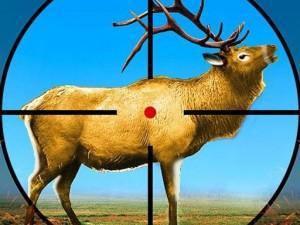 Wild Deer Hunting 3D